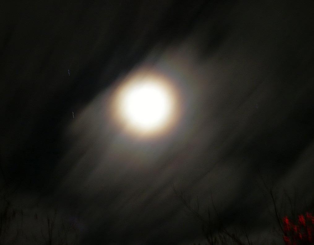 Необычные фото 2008-11-17_03-16-29